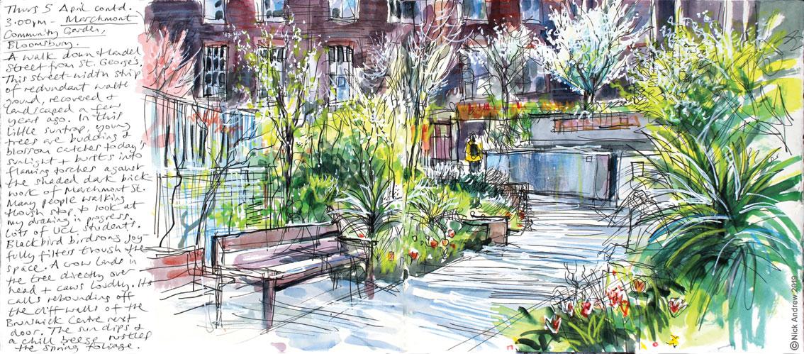 Marchmont-Community-Garden
